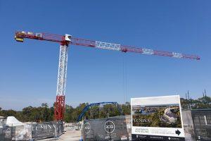 Flat Top Crane_Boland Cranes